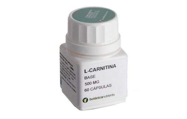 L-Carnitina 500 Mg. 60 Caps.